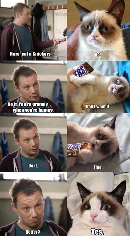 Grumpy Cat - Eat a Snickers